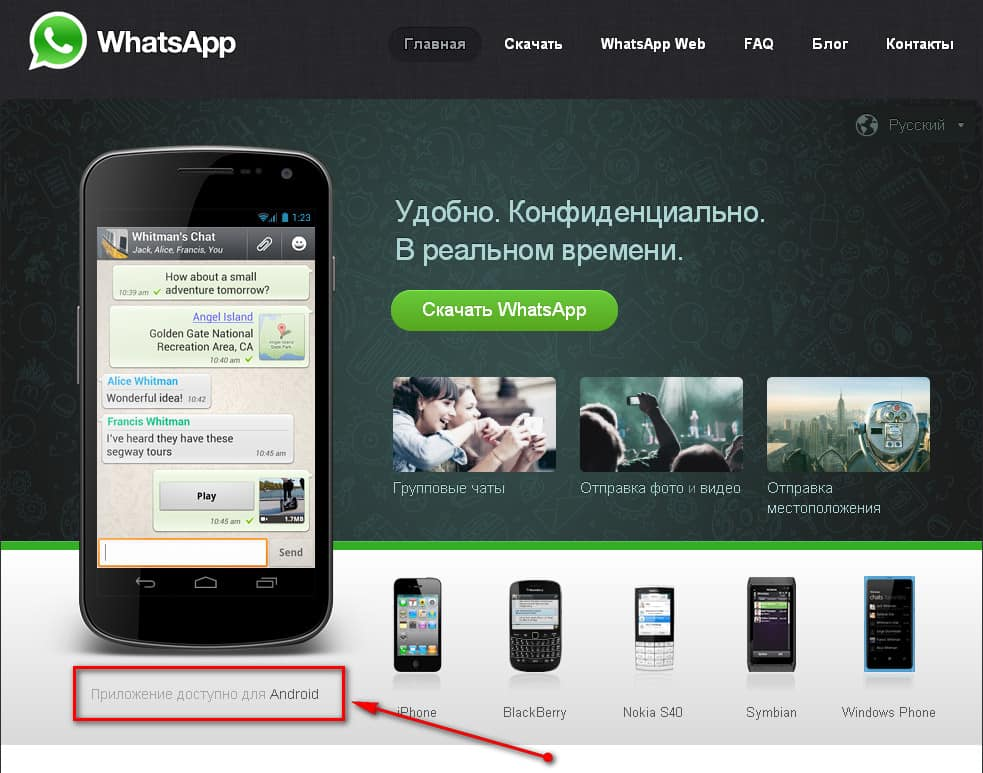 WhatsApp-5(1)